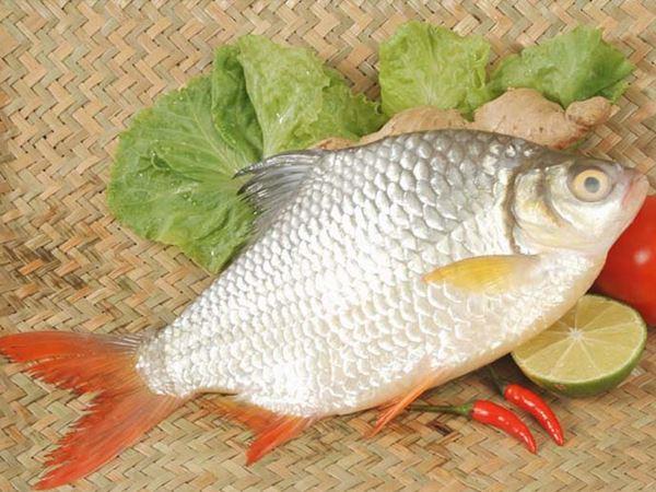 Mơ thấy cá mè điềm báo lành hay dữ?